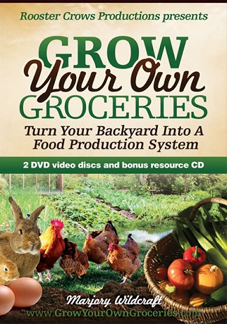 Growing Your Own Groceries