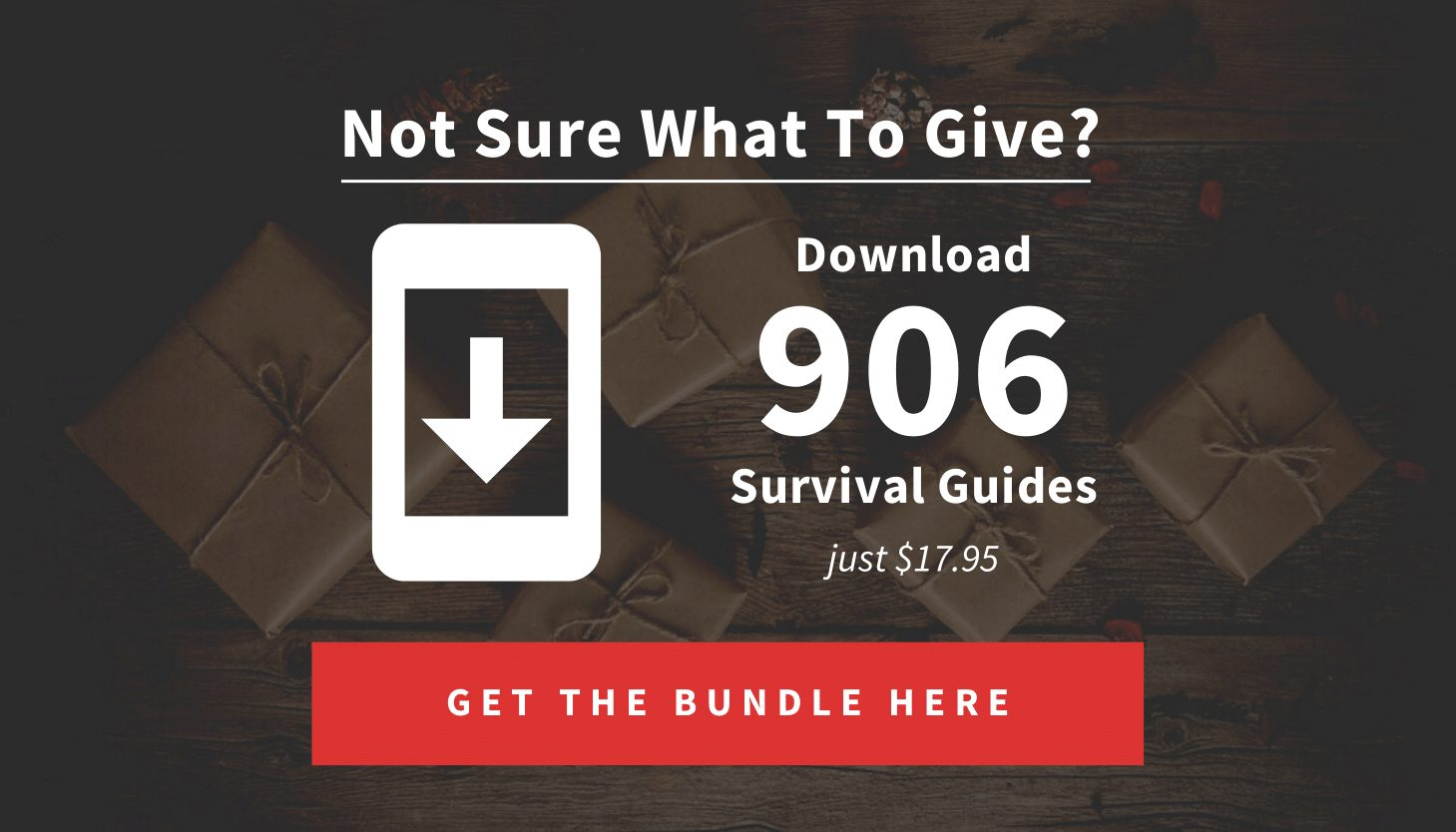 906 Survival PDFs (HL Gift Guide Body Content)-1
